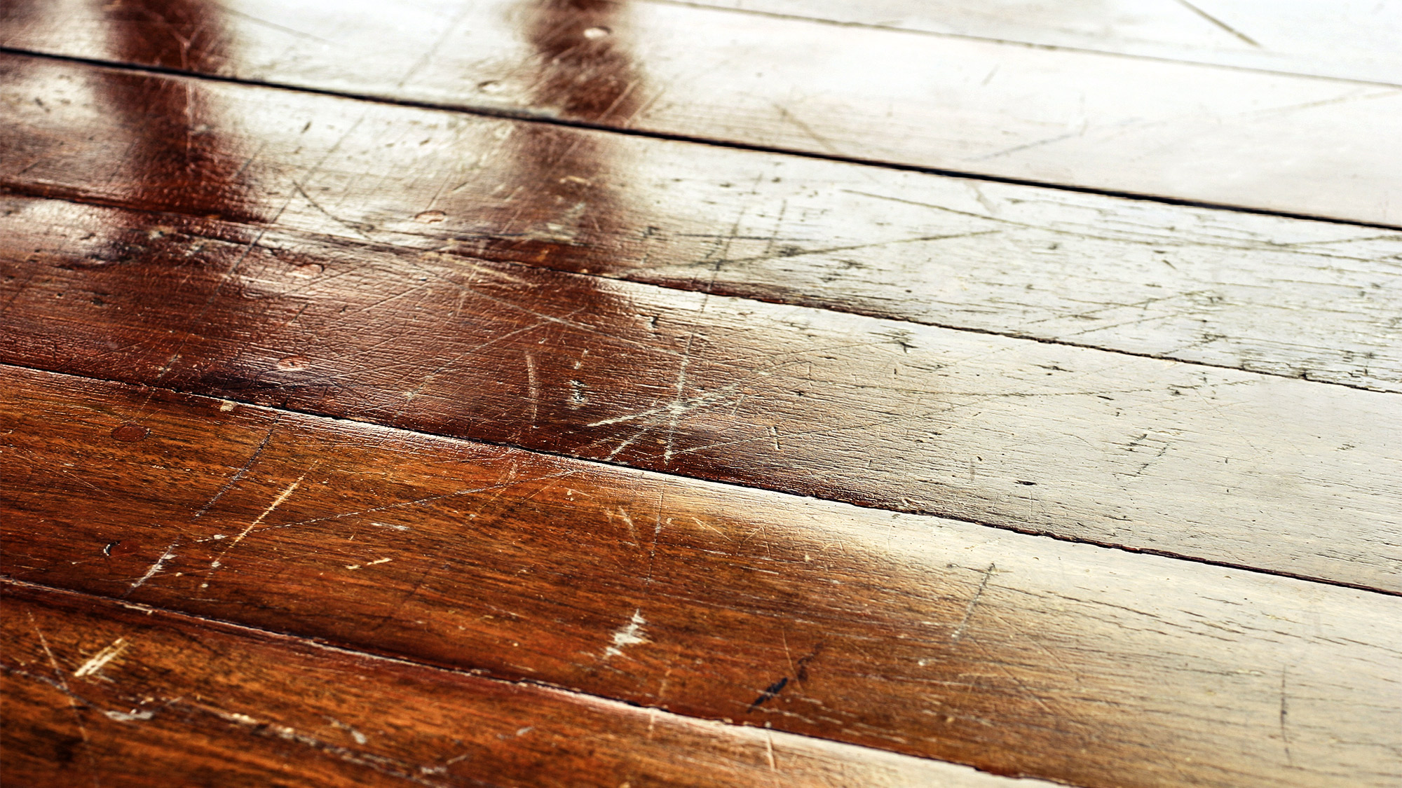 Removing Surface Scratches From Hardwood Floors Carpet