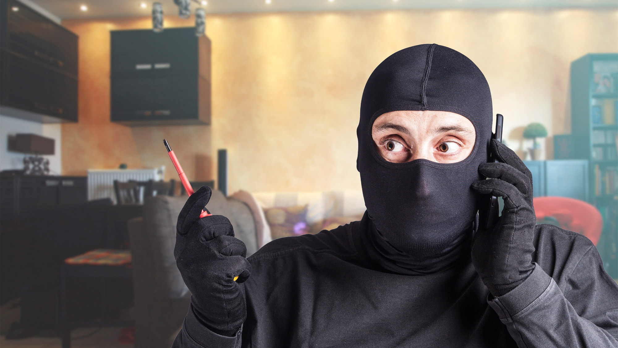 The Burglar Did What?! 5 Most Bizarre Home Break-Ins Ever